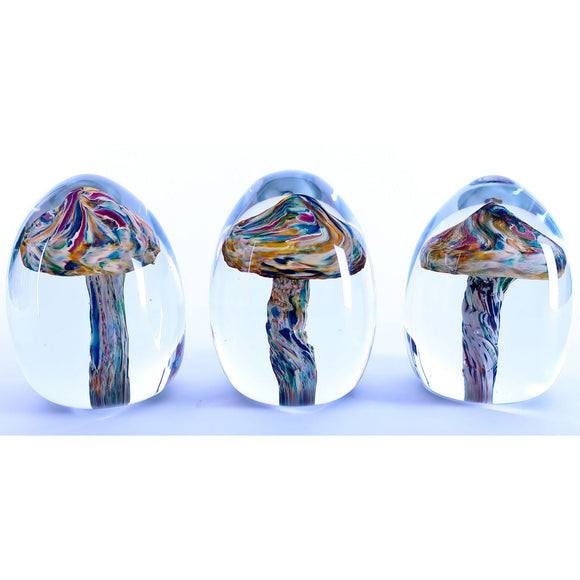 Grateful Gathers Glass By Danny Polk Jr Mushroom Paperweights Artisan Crafted Hand Blown American Art Glass