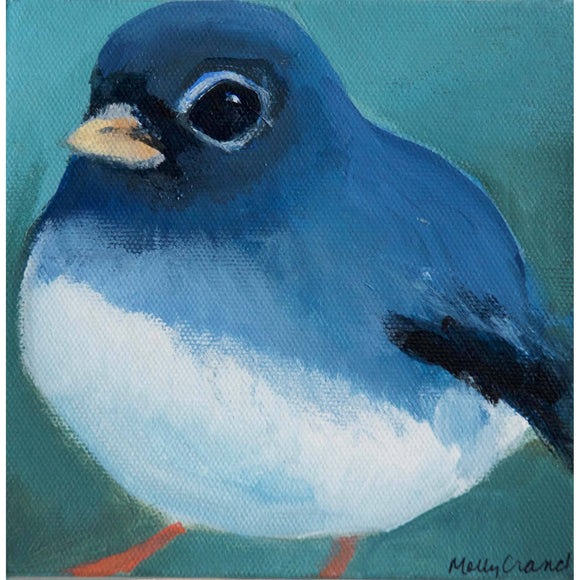 Molly Cranch Artist Painting Baby Jay 6x6 OL04 Original One Of A Kind Acrylic Painting