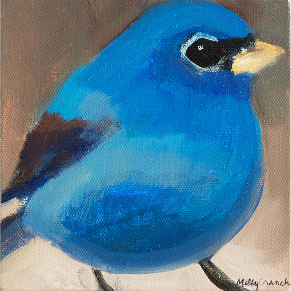 Molly Cranch Artist Painting Blue Bird 6x6 OLO5 Original One Of A Kind Acrylic Painting