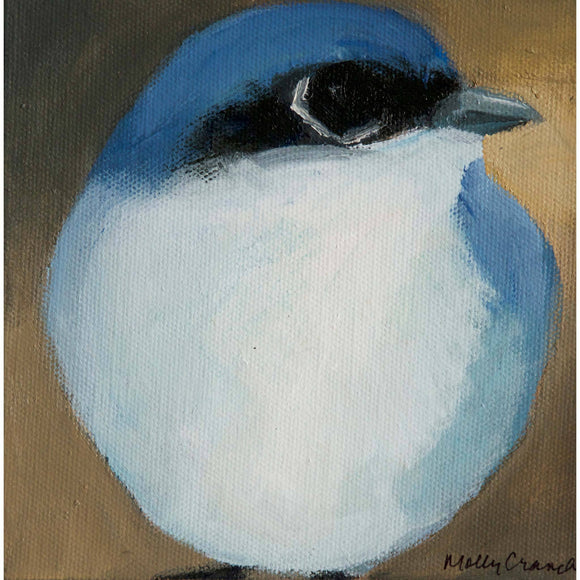Molly Cranch Artist Painting Blue Jay 6x6 OL01 Original One Of A Kind Acrylic Painting
