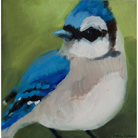 Molly Cranch Artist Painting Blue Jay 8x8 OL08 Original One Of A Kind Acrylic Painting
