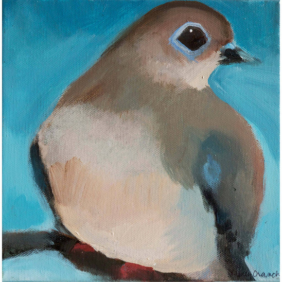 Molly Cranch Artist Painting Mourning Dove 8x8 OL09 Original One Of A Kind Acrylic Painting