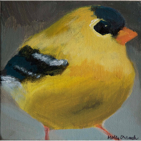 Molly Cranch Artist Painting Yellow Finch 6x6 OL03 Original One Of A Kind Acrylic Painting