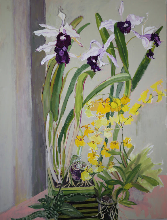 COVID Norm's Orchids C-lb335 Painting by Lila Bacon 1 05-2020 30x40