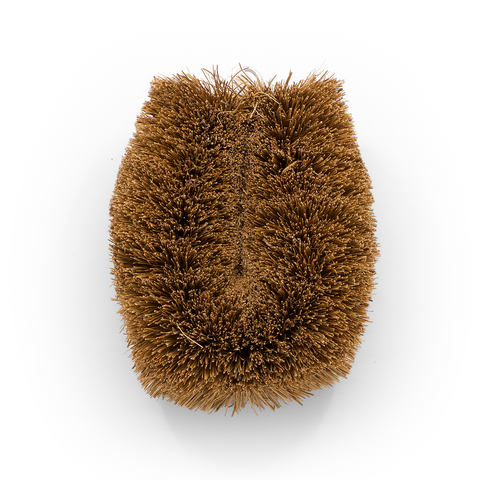 Vegetable brush from coconut