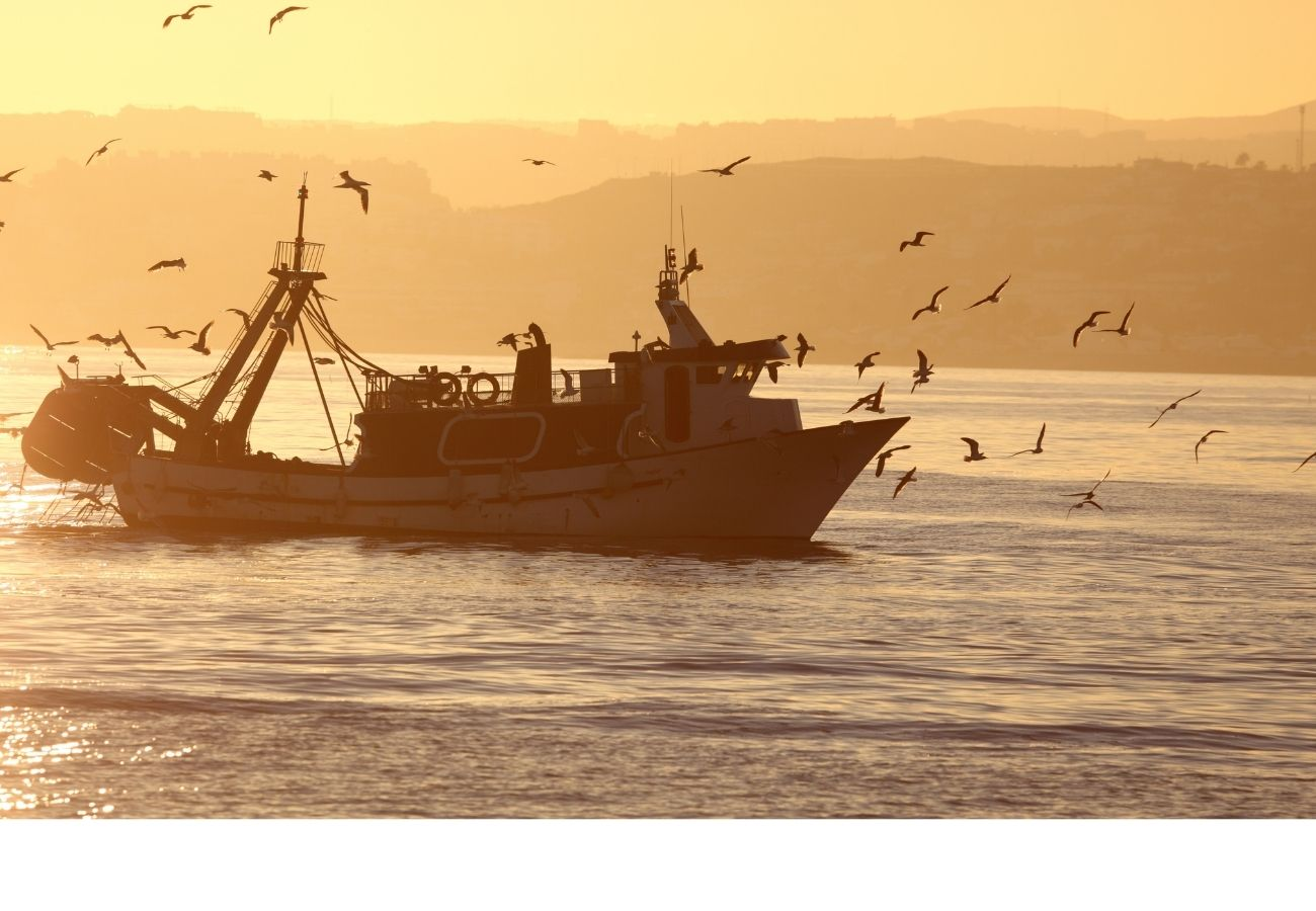 early morning fishing boat