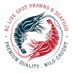 Live Spot Prawns & Seafood | Pick Up & Delivery in Vancouver & Ladner, BC