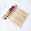 10pcs bamboo toothbrushes for kids color display