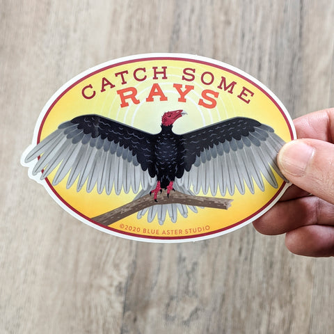 "An oval sticker reading ""catch some rays"" with an illustrated turkey fulture spreading its wings against a sunny sky."