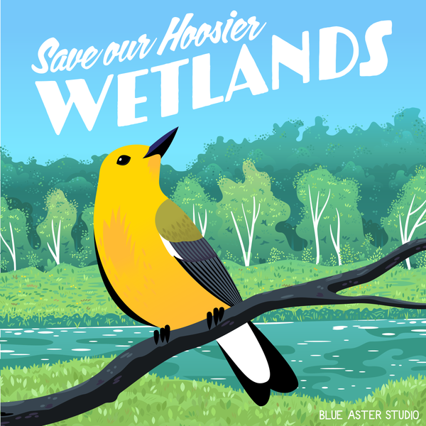 """An illustrated poster of a prothonotary warbler in a wetland environment. The text on the design reads """"Save our Hoosier Wetlands"""""""