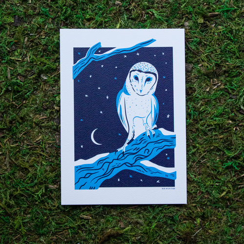 An art print of a barn owl perched on a snowy tree branch with a moon and stars in the background