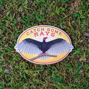 "A oval vinyl sticker of an illustration of a turkey vulture with the words ""Catch Some Rays"""