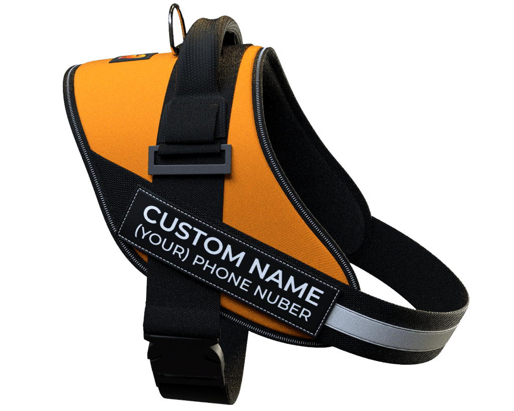 Personalized NO PULL Harness by MYHARNESS™