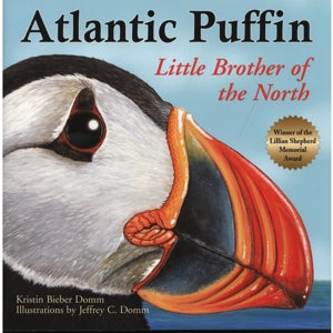 Atlantic Puffin by Kristin Bieber Domm