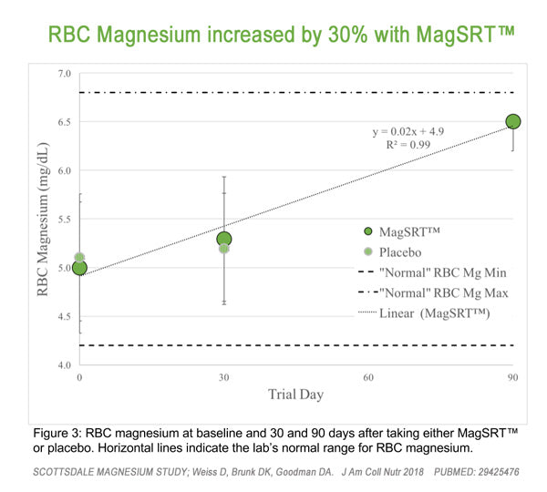 Scottsdale Magnesium Study - MagSRT Increased Magnesium RBC