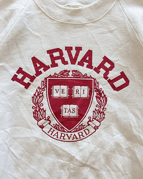 "Fruit of the Loom ""Harvard"" Raglan Sweatshirt - 1990s"