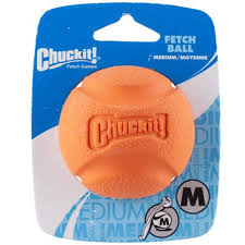 Chuck It Fetch Ball