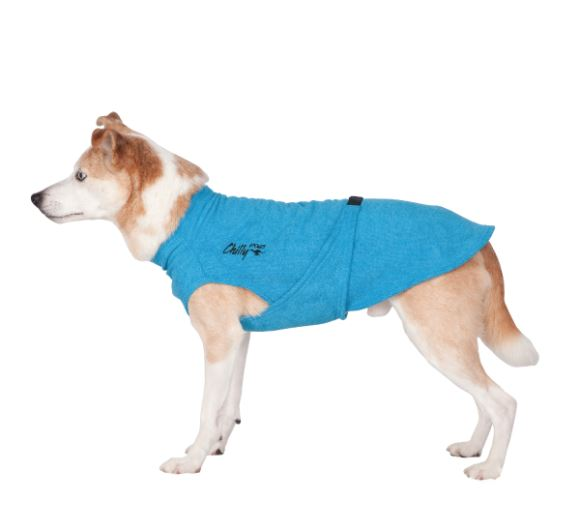 Chilly Dog Soaker Robe