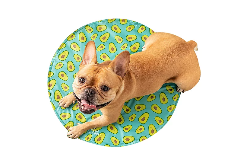 Go Fresh Pet Round Ice-Mat Aqua