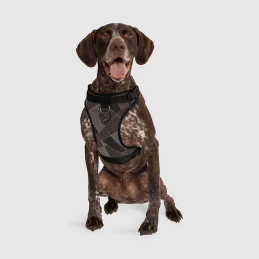 Canada Pooch Everything Water-Resistant Harness Reflective