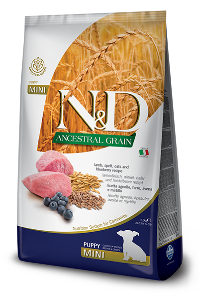 N&D Ancestral Grain Lamb & Blueberry Puppy Mini