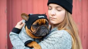 Canada Pooch Pet Parent Beanie Black O/S