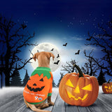 Halloween Warm Pet Clothes