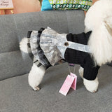 Dog Star Mesh Skirt Knitwear With Sleeves