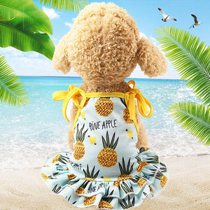 Summer Fashion Cats  Dogs  Dress