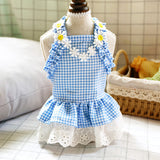 Pet  Blue Plaid Sun Dress