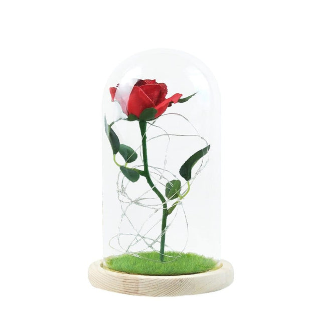 Rose Flower In Glass Bear Gift LED Lamp Glass Cover Rose Bear Valentine's Day Birthday Gift for Children Girlfriend and Mother