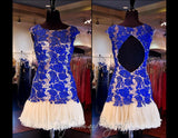 Cobalt/Nude Lace Open Back Short Dress (SALE) - Rsvp DJ - Short Dress - Rsvp Prom and Pageant Atlanta, Georgia GA - 3