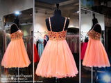 Coral Beaded Sweetheart Top and Tulle Skirt Homecoming Dress (SALE) - Rsvp COL - Short Dress - Rsvp Prom and Pageant Atlanta, Georgia GA - 4