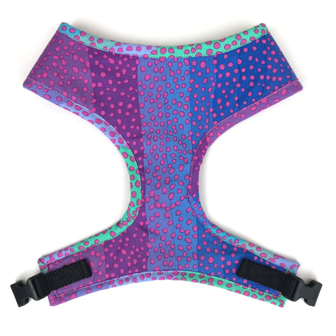 Ombré Dots Harness