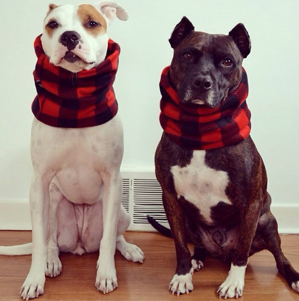 Buffalo Plaid Snood