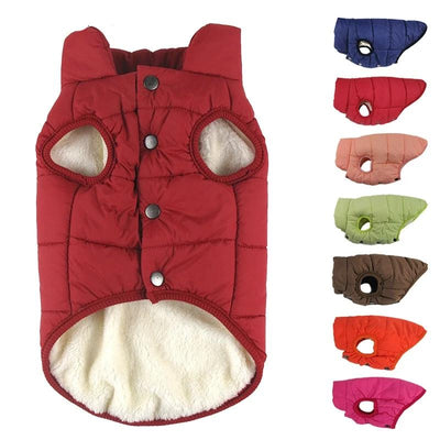 Warm Christmas Big Dog Jacket