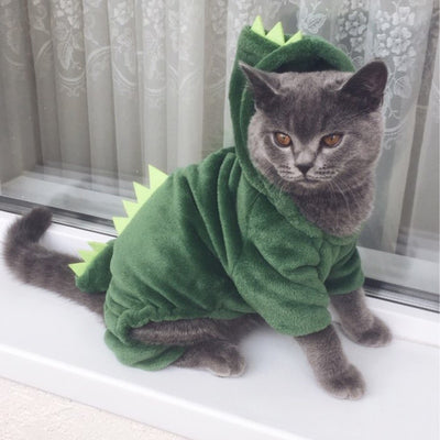 Funny Dinosaur Design Cat Costume
