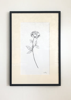Peony - Framed Botanical Line Drawing