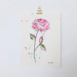 Pink Peony Botanical Watercolour Painting