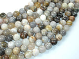 Bamboo Leaf Agate, 10mm (10.3 mm) Round Beads-BeadXpert