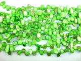 Mother of Pearl Beads, Green Shell, Top Drilled Free Form-BeadXpert