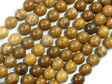 Agate Beads-Brown, 8mm(8.5mm)-BeadXpert