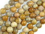 Fossil Coral Beads, 10mm, Round Beads-BeadXpert