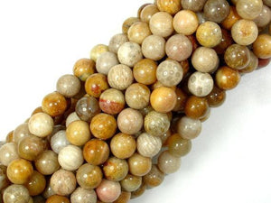 Fossil Coral Beads, 7mm, Round Beads-BeadXpert