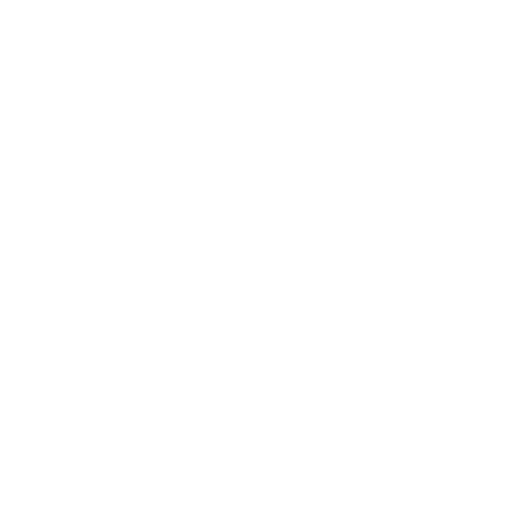 Jedi Order Transfer Decal