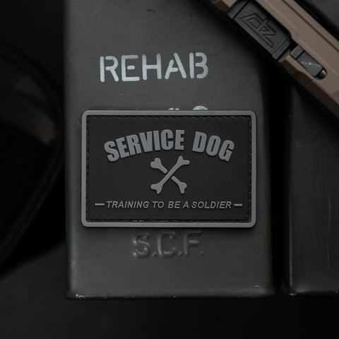 Service Dog Training To Be A Soldier