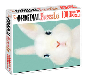 Easter Bunny is Wooden 1000 Piece Jigsaw Puzzle Toy For Adults and Kids