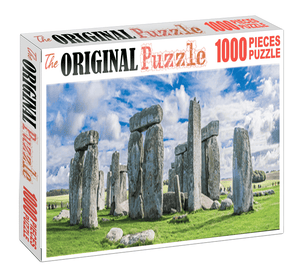 Standing Wall of PISA is Wooden 1000 Piece Jigsaw Puzzle Toy For Adults and Kids