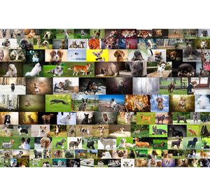 Dog Breeds Wooden 1000 Piece Jigsaw Puzzle Toy For Adults and Kids