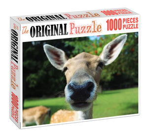 Donkey Wooden 1000 Piece Jigsaw Puzzle Toy For Adults and Kids